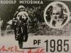 mitosinka15c